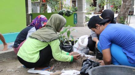 Penanaman Tanaman Obat Keluarga (TOGA) bersama Mahasiswa KKN UPN Yogyakarta