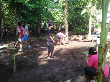 Kerjabakti Penanaman pohon pisang Karangtaruna